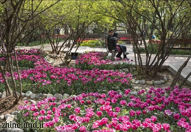 باغ ایرانی در بهار