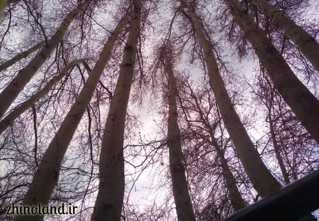 عکس باغ ایرانی ده ونک